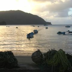 Tobago - Charlotteville (14)