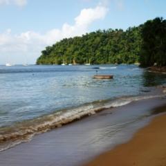 Tobago - Charlotteville (19)