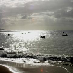 Tobago - in Castara (12)