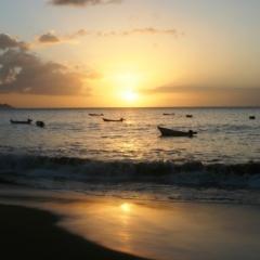 Tobago - in Castara (15)