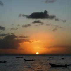 Tobago - in Castara (16)