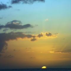 Tobago - in Castara (17)