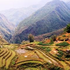 Vietnam (36)