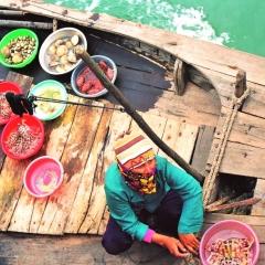 Vietnam (8)