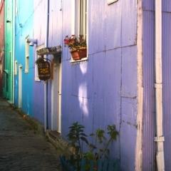 Zuid Chili (47)