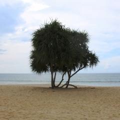 Zuid Thailand (7)