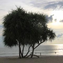 Zuid Thailand (9)