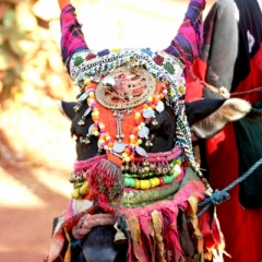 Zuid West India (38)