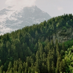 Zwitserland (20)